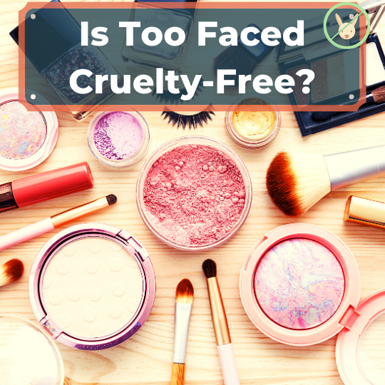 Is Too Faced Cruelty-Free