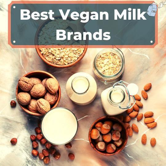 Best vegan milk brands