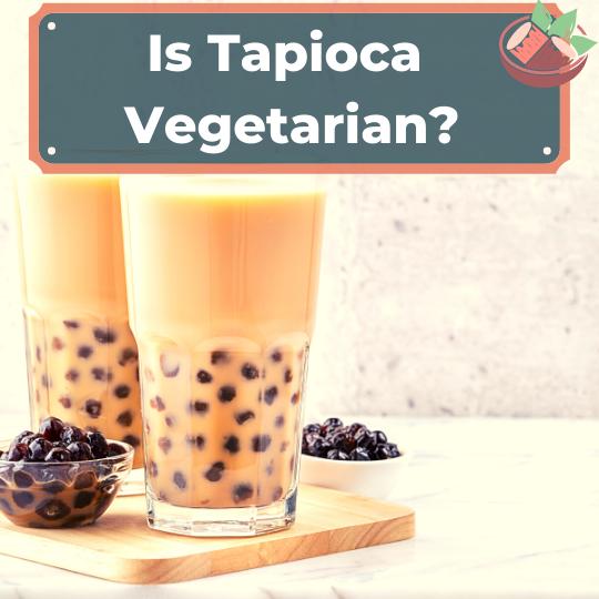 Is Tapioca Vegetarian