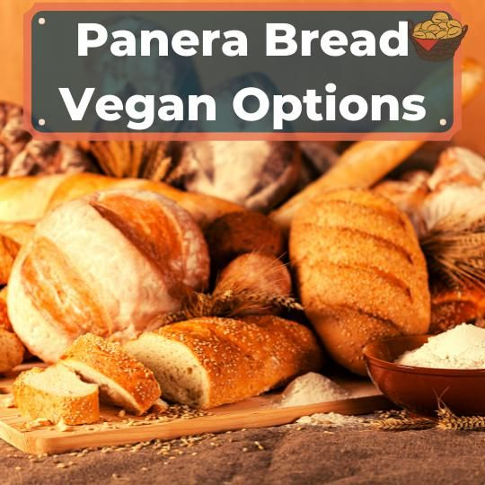 Panera vegan options